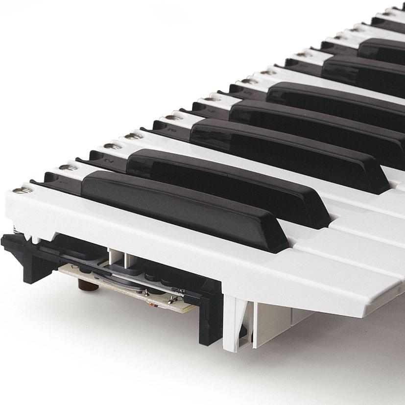 Fatar 49TP/9S Tastiera 4 Ottave